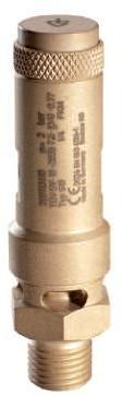 """810 -3/4""""- FKM - 8 bar"""
