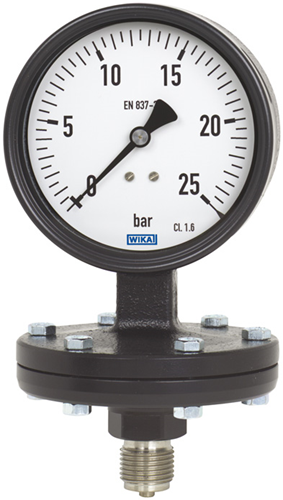 Diaphragm pressure gauge, model 422.12