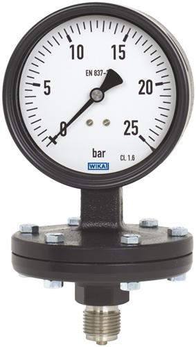 Wika Diaphragm pressure gauge, model 422.12